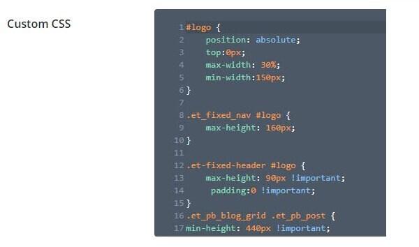 How to Build a Website to make money A1 CSS Logo