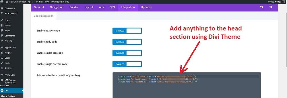 Divi Theme header integration