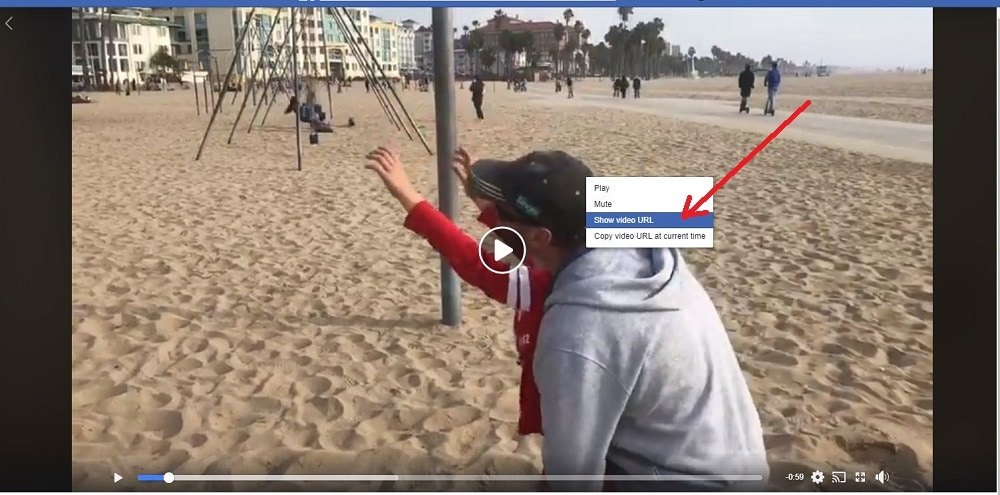 How to Download a Facebook Video show url