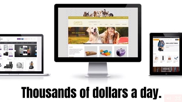 Is Website ATM a Scam Earn $1000 a day