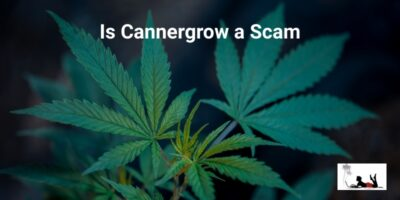 is CannerGrow a Scam (The Cannerald Offshoot!)