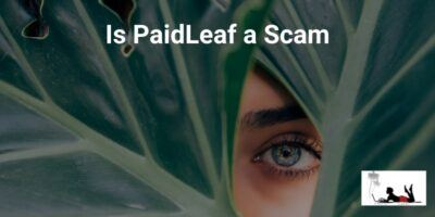 Is PaidLeaf a Scam (Another Fake Replica!)