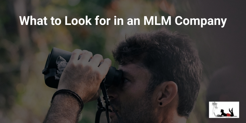 What-to-Look-for-in-an-MLM-Company