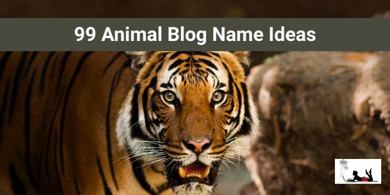 Animal Blog Name Ideas