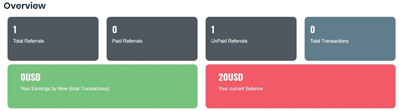 Paid to Flex account overview
