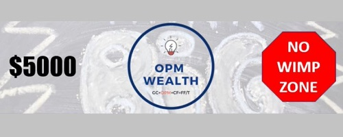 Is OPM Wealth a Scam 500x200