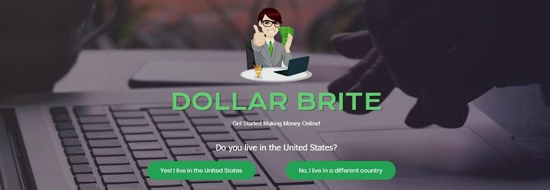 Dollar Brite Buttons