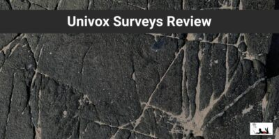 Univox Surveys Review to Earn Extra Pennies